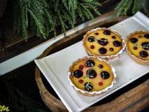 莓微型杉木,复盆子酸 免版税库存照片