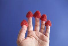 莓手 免版税库存照片