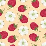 莓收集07 免版税库存照片