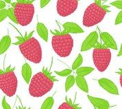 莓无缝的样式 叶子和桃红色森林莓果的不尽的装饰品 背景 免版税图库摄影