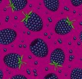 黑莓无缝的样式 库存照片