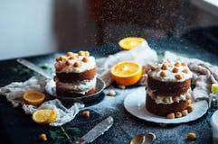 莓杯形蛋糕 用raspberr盖的一个奶油色蛋糕的特写镜头 库存照片