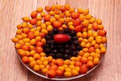 莓果、野玫瑰果和海鼠李在板材 免版税库存照片