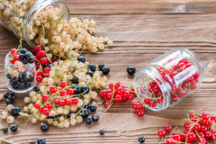 莓果、维生素和抗氧剂混乱在木桌上 免版税库存照片