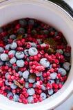 莓果减少准备 免版税库存照片