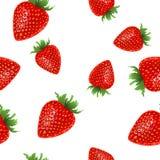 莓果动画片传染媒介果子 免版税图库摄影