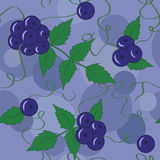 莓果和叶子的无缝的样式在紫色颜色您的 库存图片
