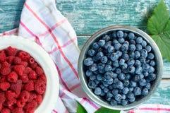 莓果和莓 库存图片