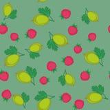 莓果和鹅莓动画片无缝的纹理647 库存例证