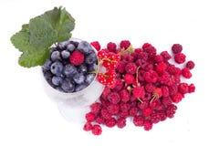 莓果品种与叶子的在玻璃 免版税图库摄影
