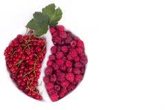 莓果品种与叶子的在玻璃 库存图片