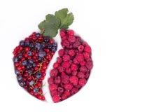 莓果品种与叶子的在玻璃 库存照片