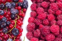 莓果品种与叶子的在玻璃 图库摄影