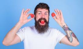 莓果嘴有胡子的行家 我们是什么我们吃 草莓甜口味概念 人英俊的行家长的胡子吃 免版税图库摄影