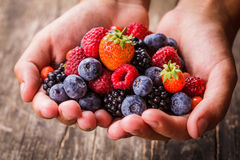 莓果在手上 免版税库存照片