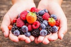 莓果在手上 库存图片
