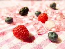 莓果天堂 库存图片
