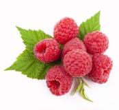莓果子特写镜头 图库摄影