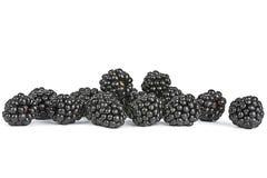 黑莓果子 库存照片