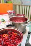 莓果果酱 免版税库存照片
