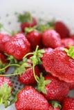 莓果每十二 库存图片