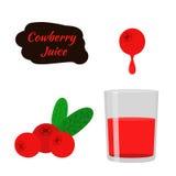 莓果汁,红色越橘,越橘,在平的样式的蔓越桔 免版税库存照片
