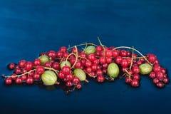 莓果混合红浆果和鹅莓 库存照片