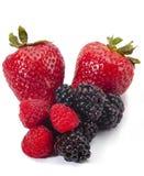 莓果混杂的人群 免版税库存图片