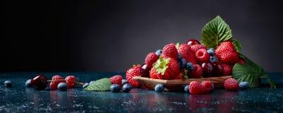 莓果特写镜头五颜六色的被分类的混合 库存照片