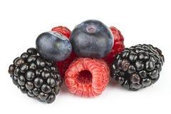 莓果特写镜头 免版税库存照片