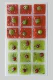 从莓果的冰块 库存照片