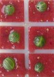 从莓果的冰块 免版税库存照片