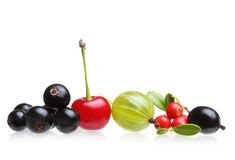 莓果的另外类型被隔绝的 免版税库存图片