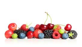 莓果的另外类型被隔绝的 库存照片
