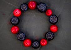 莓果的圈子 库存照片