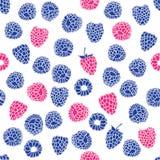 莓果的无缝的样式 库存图片