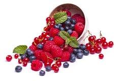 莓果的鲜美混合 免版税库存照片