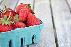 莓果篮子  库存图片