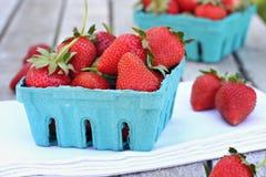 莓果篮子  库存照片