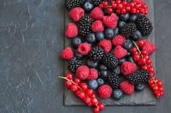 莓果莓红浆果和蓝莓的混合在黑色 免版税库存图片