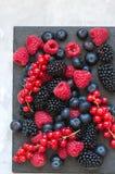 莓果莓红浆果蓝莓和blackber的混合 库存照片