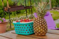 莓果菠萝食物和桌 免版税图库摄影