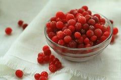 莓果蔓越桔,在一块白色亚麻布前面的结霜的,玻璃板,特写镜头 免版税图库摄影