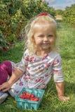 莓果补丁的逗人喜爱的女孩 图库摄影