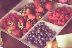 莓果选择柔和的淡色彩 库存图片