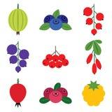 莓果集合 图库摄影