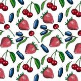 莓果集合 库存图片