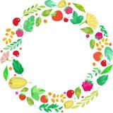从莓果,叶子的圆的框架 库存照片