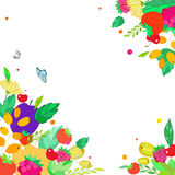 从莓果,果子,叶子的方形的框架 库存照片