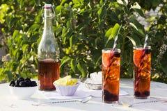 黑莓柠檬在庭院里冰了茶 图库摄影